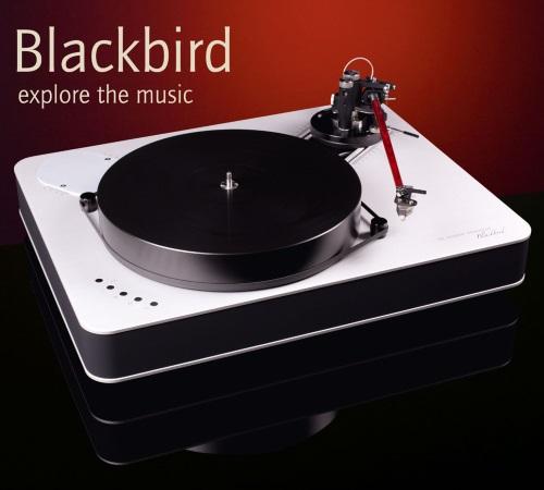 http://mmaasmedia.com/images/Feickert/Blackbird.jpg